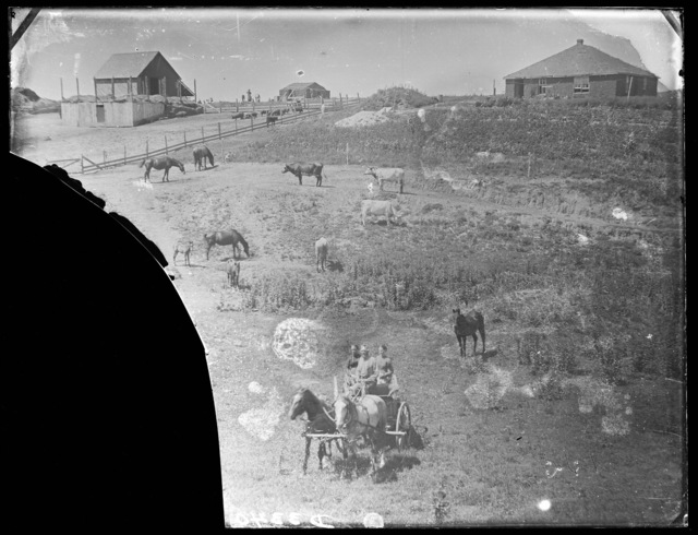Family on a ranch in Custer County, Nebraska.