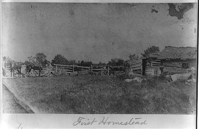 First homestead