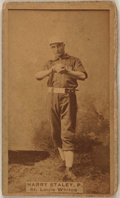 [Harry Staley, St. Louis Whites, baseball card portrait]