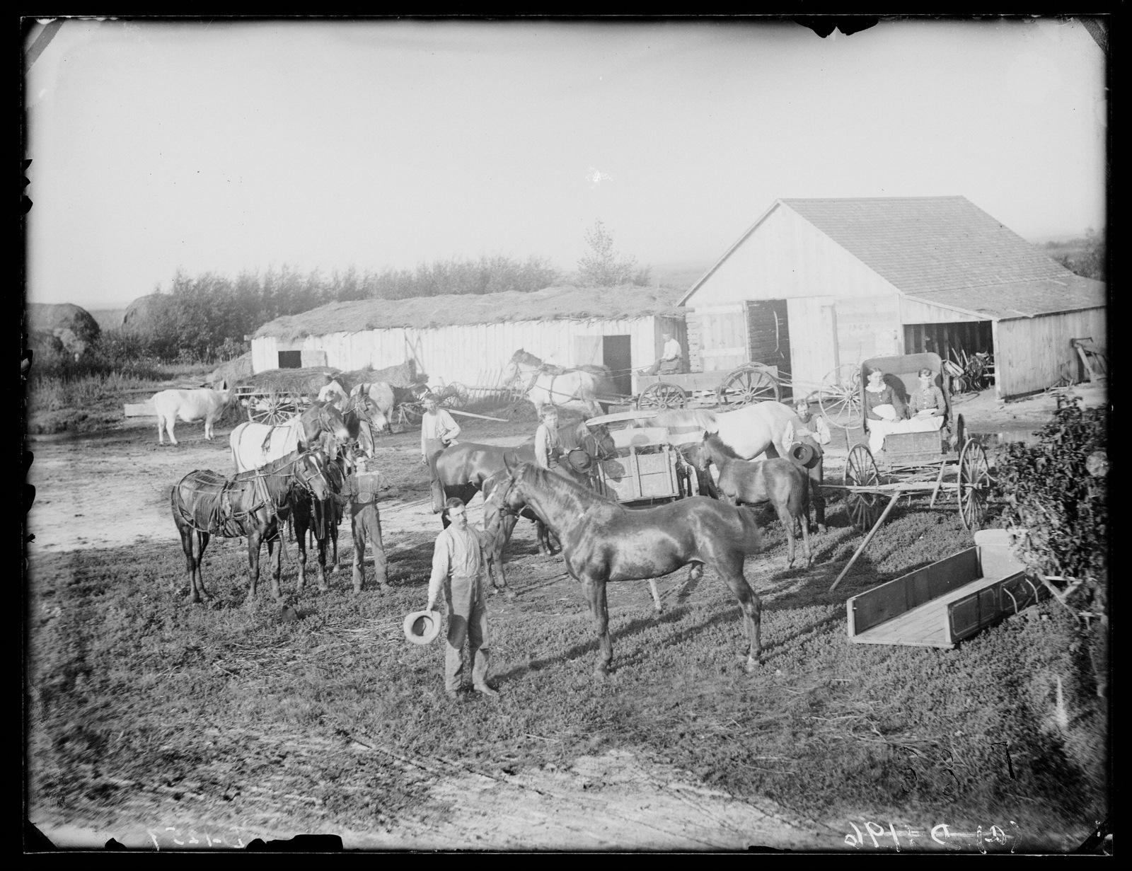Harvey G. Shannon, near Woods Parks, Custer County, Nebraska