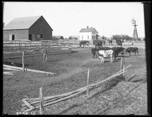J.C. Pollard, Merna, Custer County, Nebraska.