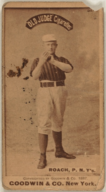 [John Roach, New York Giants, baseball card portrait]
