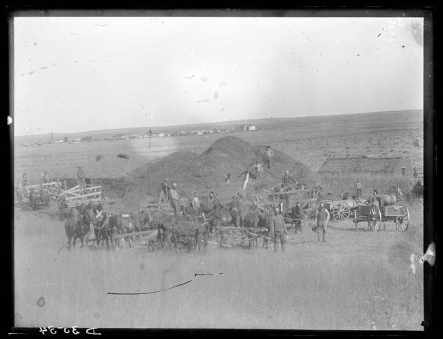 Large threshing crew near Berwyn, Custer County, Nebraska.