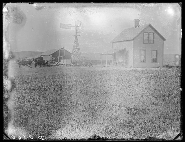 Ranch scene in Custer County, Nebraska.