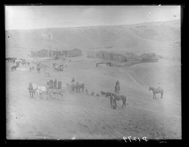 Ranching in East Custer County, Nebraska.