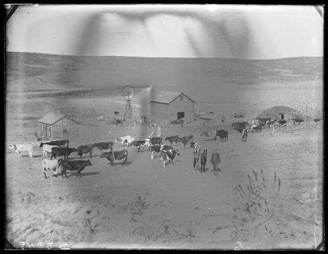 Stock ranch in east Custer County, Nebraska.