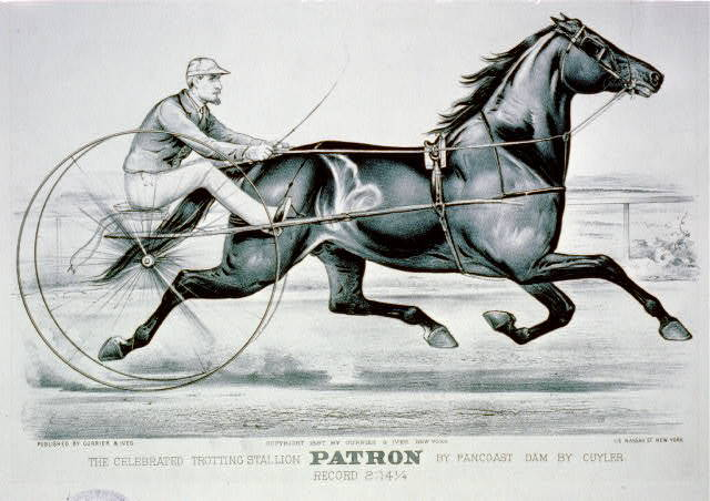 The Celebrated trotting Stallion Patron by Pancoast dam by Cuyler: Record 2:14 1/4