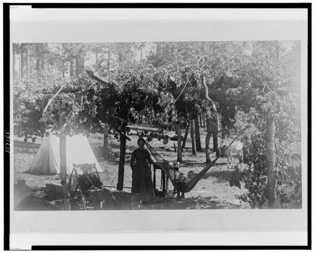View of our romada(?), in camp at Baker's Butte, Mogollon Mountains, Arizona
