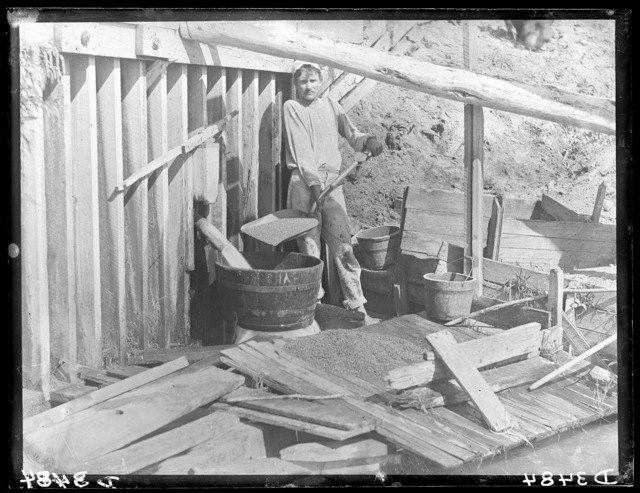 Washing wheat at R.G. Carr's mill on the Middle Loup River at West Union, Custer County, Nebraska.