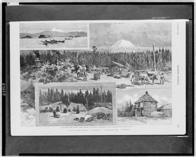 A Puyallup hop ranch near Tacoma, Washington Territory / drawn by Charles Graham.