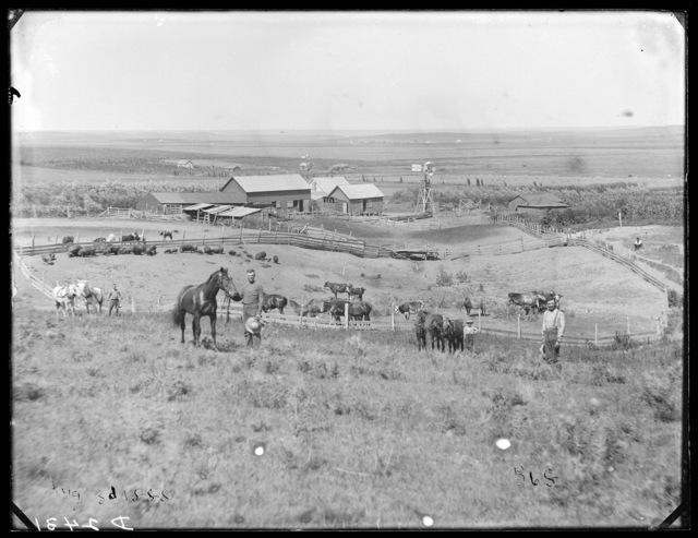 Dan Lohr Ranch near Merna, Custer County, Nebraska.