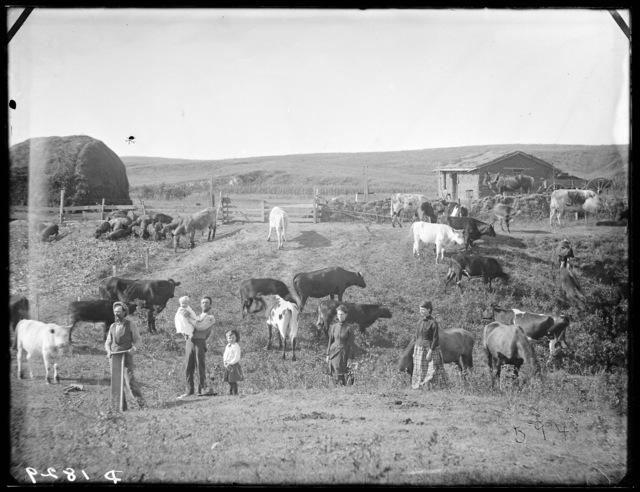 East Broken Bow, Custer County, Nebraska.