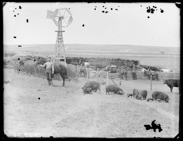 East Custer County, Nebraska.