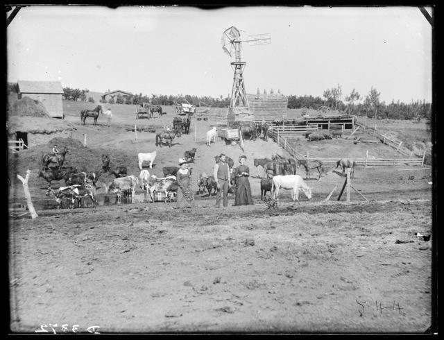 Family on a stock ranch in Custer County, Nebraska.