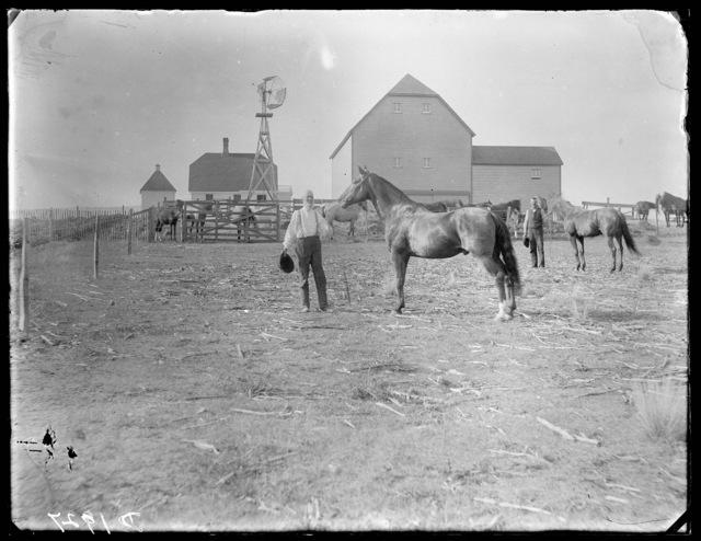 James Kirk near Ansley, Custer County, Nebraska.