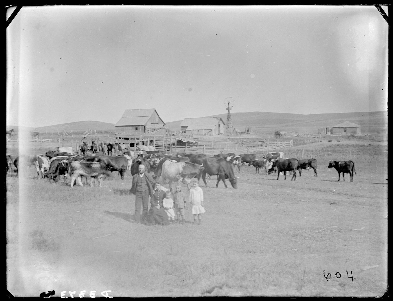 Ranch in eastern Custer County, Nebraska.