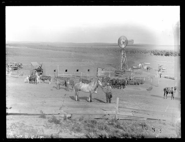 Ranch near Westerville, Custer County, Nebraska.