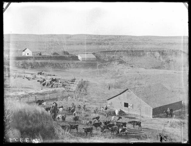 Stock ranch on South Loup River, Custer County, Nebraska.
