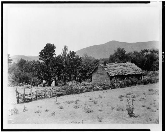 Tejon ranch.  An Indian home and orchard