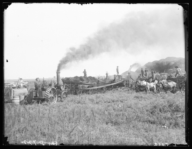Threshing in Buffalo County.