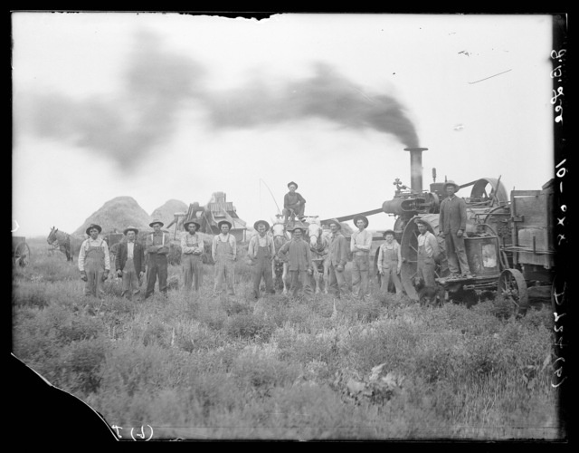 Threshing on J.B. Lee farm north of Shelton, Nebraska