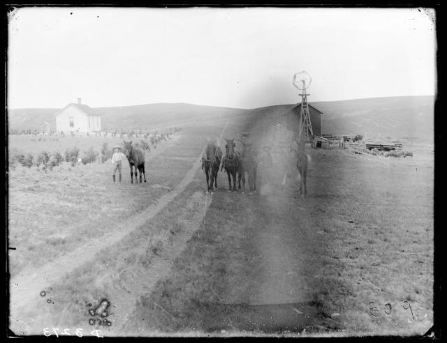Farm scene near Broken Bow, Custer County, Nebraska.