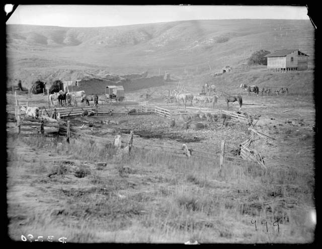 Ranch in northeastern Custer County, Nebraska.