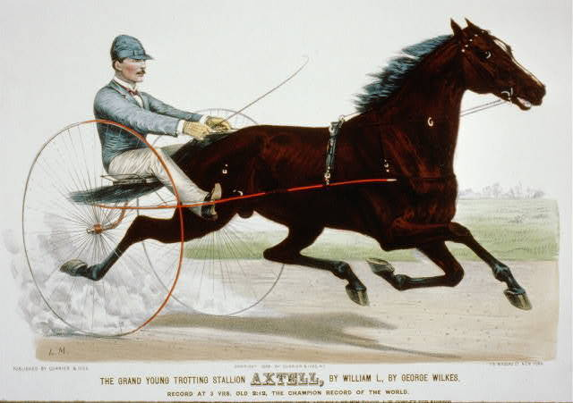 The grand young trotting stallion Axtell, by William L., by George Wilkes: record at 3 yrs. old 2:12, the champion record of the world