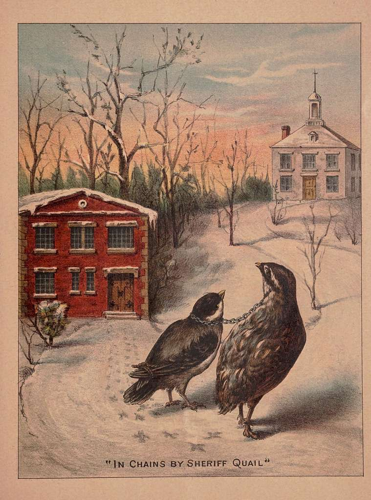 The trial of the sparrow for killing Cock Robin