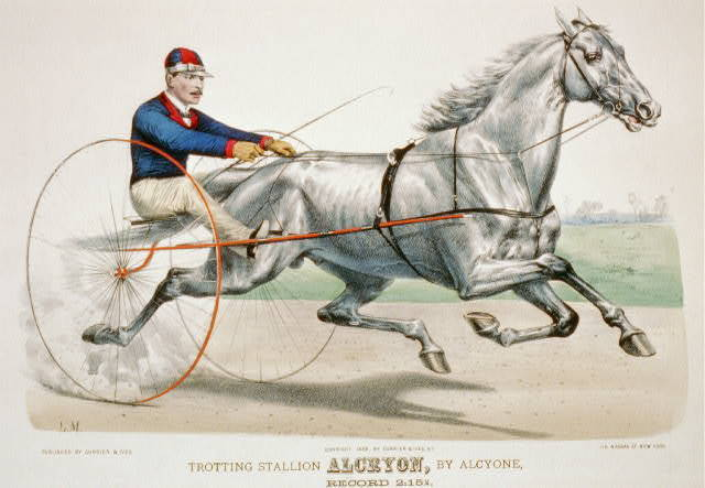 Trotting stallion Alcryon, by Alcyone: record 2:15 1/4