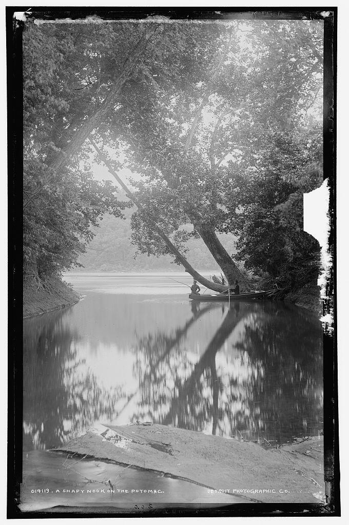 A shady nook on the Potomac