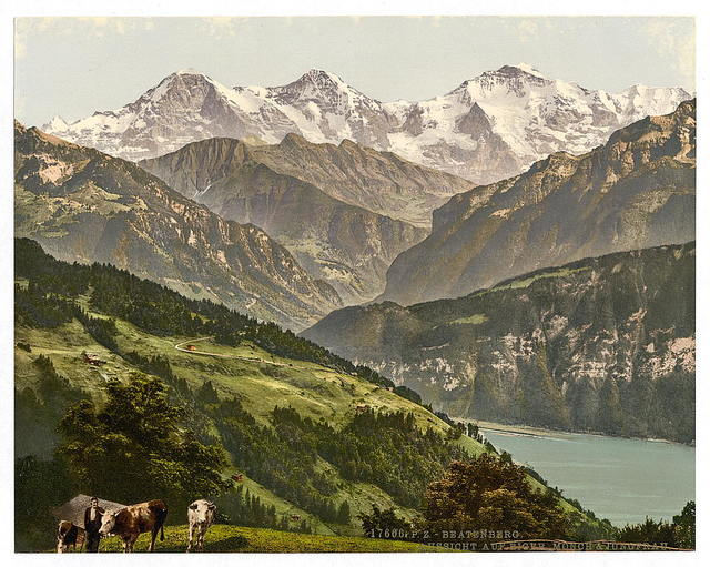 [Beatenburg (i.e., Beatenberg), view of Jungfrau, Monch and Eiger, Bernese Oberland, Switzerland]