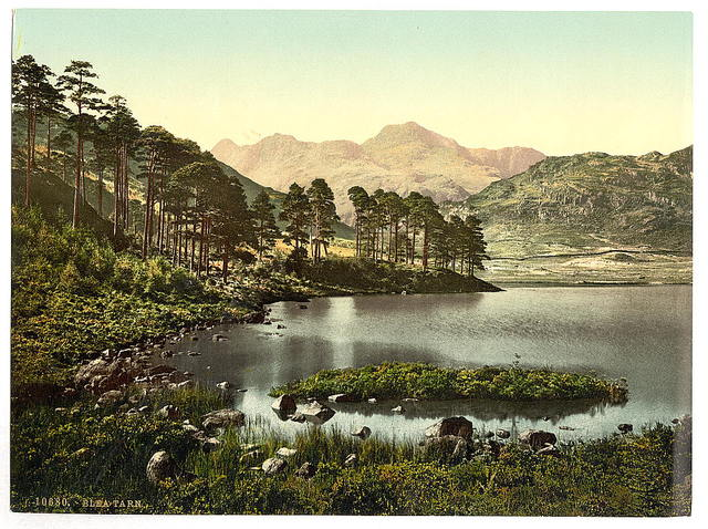 [Blea Tarn, Lake District, England]