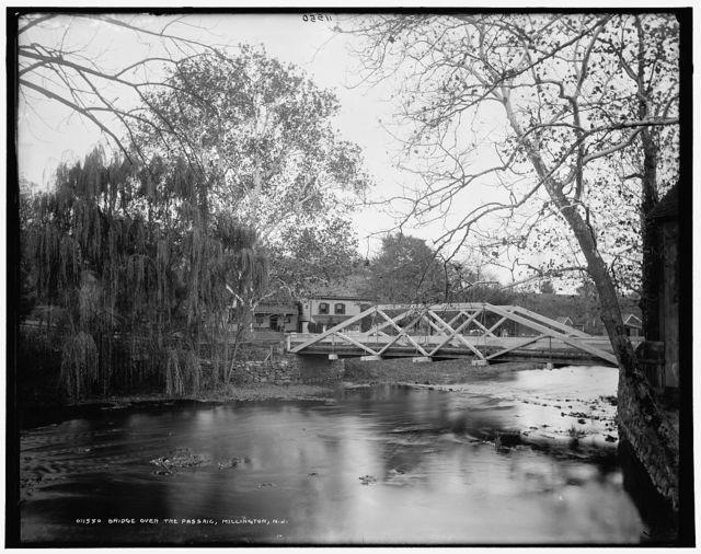 Bridge over the Passaic, Millington, N.J.