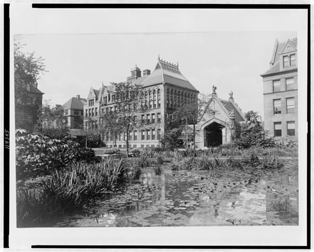 [Buildings at the University of Chicago, with lily pond in foreground, Chicago, Illinois]