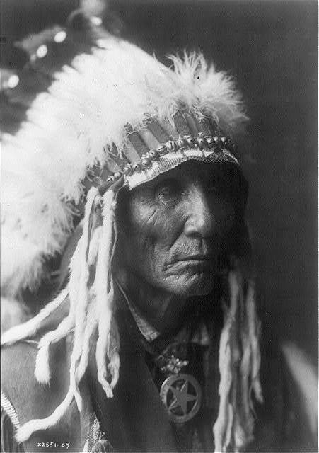 [Calico - Oglala, head-and-shoulders portrait, facing right]