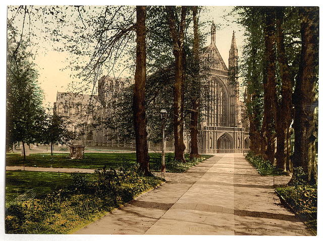 [Cathedral and avenue, Winchester, England]