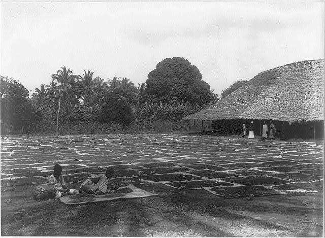 Drying cloves at Zanzibar