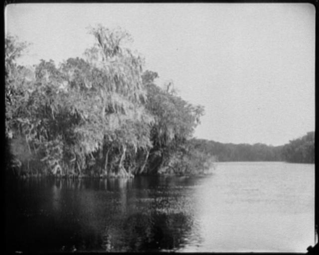 Dunn's Creek near Crescent Lake, Florida