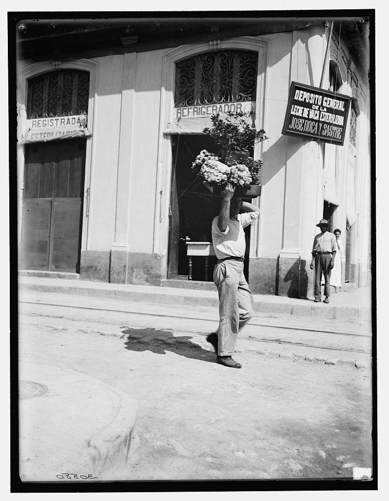 [Flower vendor, Havana, Cuba]