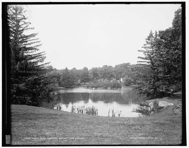 Forest Hills Cemetery, Boston, Lake Hibiscus