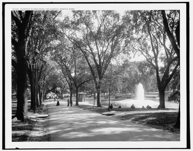 Fountain in frog pond, the Common, Boston, Mass.