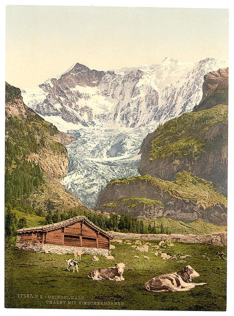 [Grindelwald, chalet and Vischerhorn, Bernese Oberland, Switzerland ]