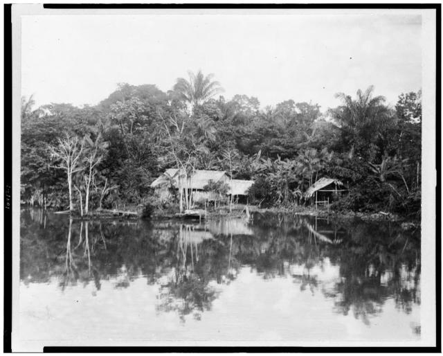 [Indian hut in clearing on river bank, Brazil]