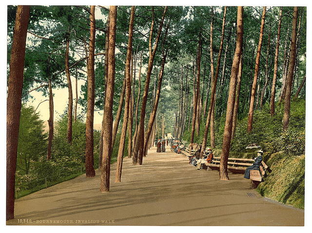 [Invalids' walk, Bournemouth, England]