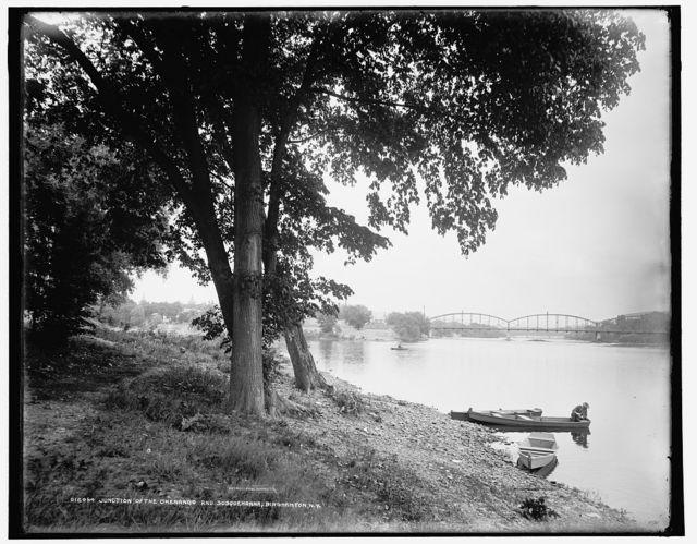 Junction of the Chenango and Susquehanna, Binghamton, N.Y.