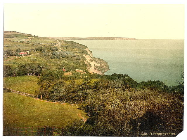 [Luccombe Chine, Isle of Wight, England]