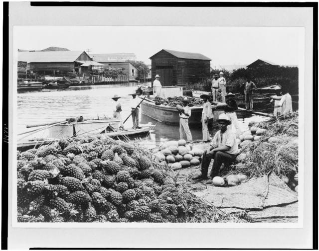 [Market scene along waterfront, with piles of pineapples and watermelons in foreground, Tampico, Mexico]