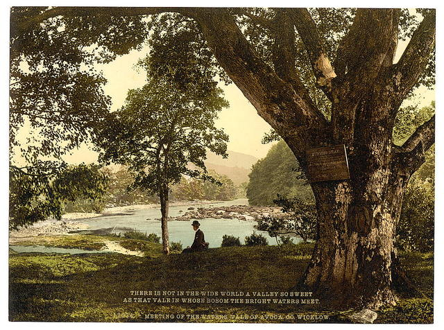 [Meeting of the waters, Vale of Avoca. County Wicklow, Ireland]