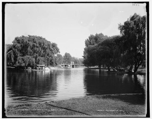 North end of lake in Public Garden, Boston